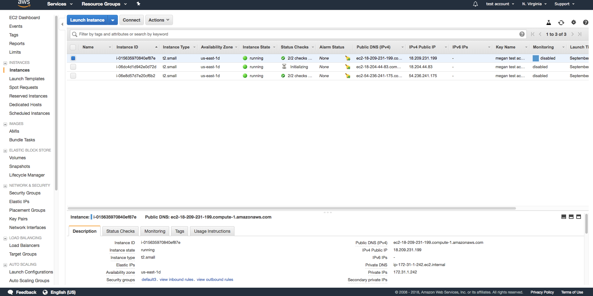 Screenshot of all instances in the AWS while installing cPanel
