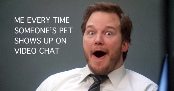 """""""ME EVERY TIME SOMEONE""""S PET SHOWS UP ON VIDEO CHAT"""" caption with a picture of the excited face of Andy from Parks & Recreation, an American television series."""