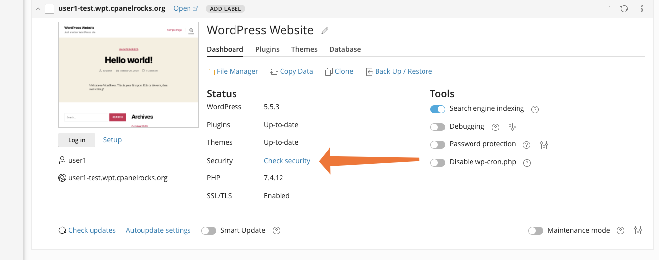 WordPress Check Security