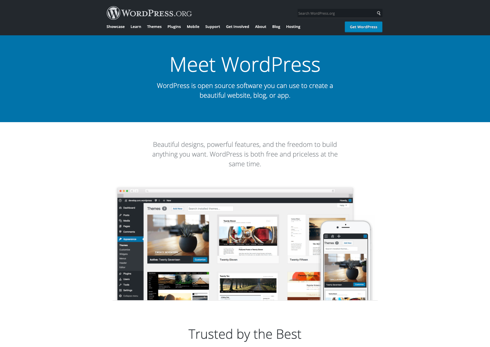 WordPress Business Site