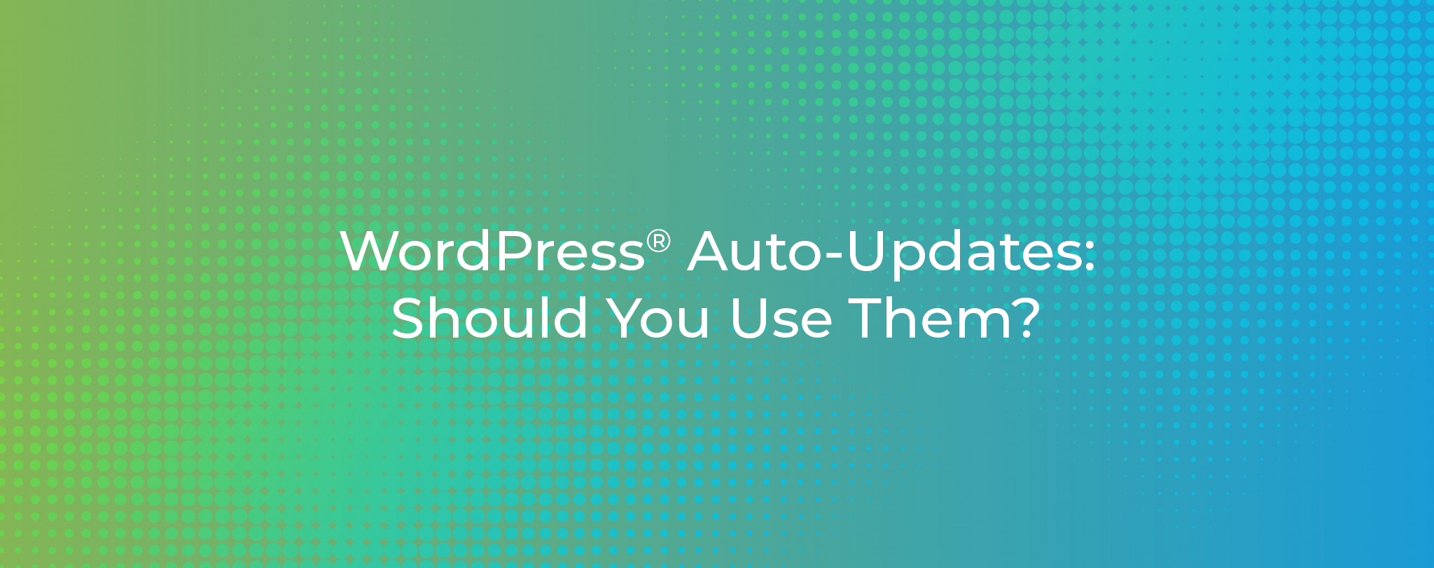 WordPress Auto Updates Should You Use Them